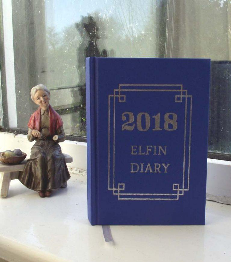 The 2018 hardback Elfin Diary