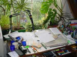 Caroline Heaney's workroom in 2004